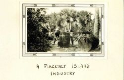 A Pinckney Island Industry Image
