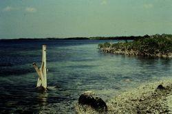 Tide staff installation at Florida Keys site Photo