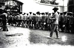 Marching the prisoners at Bilibid Prison Photo