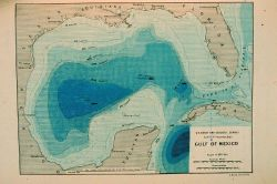 Contour map of Gulf of Mexico as sounded by the C&GS Steamer BLAKE between 1873 and 1875 Photo