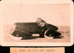 Moxo in his red racer Photo