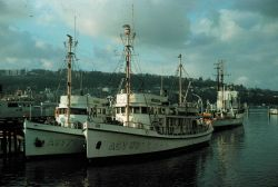 Coast and Geodetic Survey Ships LESTER JONES, PATTON, and HODGSON. Photo