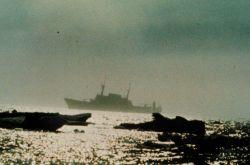 NOAA Ship DISCOVERER Photo
