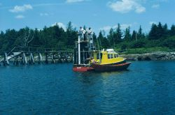 Canadian Hydrographic Service launch at dolphin tending tide gauge at high tide. Photo