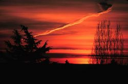 Glorious sunrise with a bizarre contrail Photo