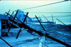 Utility poles and lines down in Garden City, South Carolina After passage of Hurricane Hugo Photo