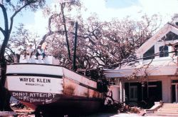 The aftermath of Hurricane Camille Photo