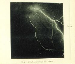 Lightning in the vicinity of Hamburg, Germany In: