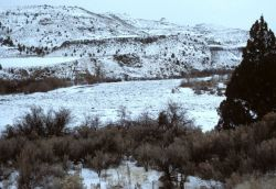 A winter day along the John Day River near its junction with its North Fork Photo