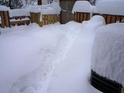 Snowmageddon: 17.8 inches at Reagan, 25 inches at Baltimore-Washington, and 32.4 inches at Dulles Airport Photo