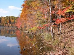 Shoreline of Clopper Lake on an autumn afternoon. Photo