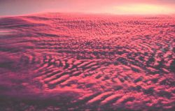 A glorious sunset illuminates altocumulus clouds as seen from above. Image