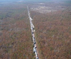 A train blown off a siding as result of Hurricane Katrina. Image