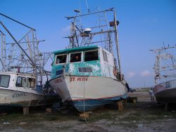 A Vietnamese shrimper peers out from his boat which is being refurbished with help of a boat lift donated by Valdez, Alaska. Image