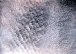 Altocumulus undulatus Image