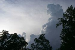 A towering cumulus builds over the Harpers Ferry area. Image