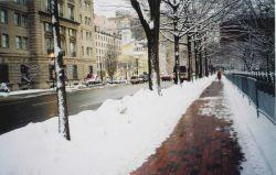 A Washington, D.C Image