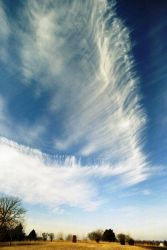 Cirrus clouds. Photo