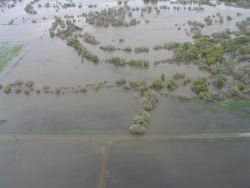 Flooding of farmlands along the San Joaquin River. Photo