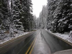 Snow in Sequoia National Park. Photo