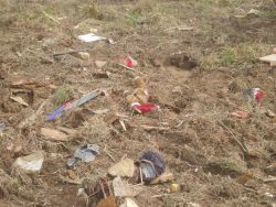 A poignant image of a child's stuffed animals strewn in a field by a tornado. Image