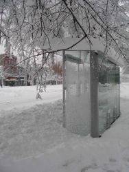 A bus stop providing no shelter Image