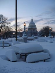 Picnic tables waiting for spring with the Capitol Building seen behind Photo