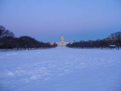 Looking east on the National Mall towards the Capitol following the blizzard of February 9-10 Photo