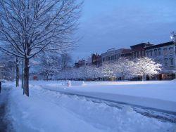A snowy DC street. Image