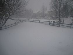 The third great storm of the winter of 2009/2010 Photo