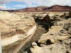 A small stream has cut through the sandstone and overlying red formations of the Colorado Plateau Image