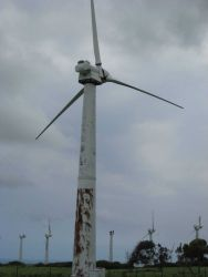 A windmill at the Kohala wind generating farm at the NW tip of Hawaii. Image