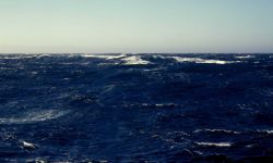A common view in the vicinity of the Aleutian Islands Image