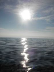 Sunlight sparkling on a tropic sea Photo