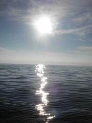 Sunlight sparkling on a tropic sea Photo