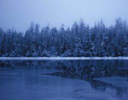 A winter scene in SE Alaska Image