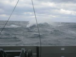 A squally day in the Gulf of Mexico Image