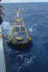 Recovering an adrift 3-meter weather buoy off the NOAA Ship Ka'imimoana Photo