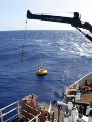 TAO buoy operations off the NOAA Ship Ka'imimoana Photo