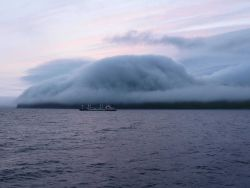 A gentle fog following topography at Dutch Harbor as a freighter leaves for an unknown port. Photo