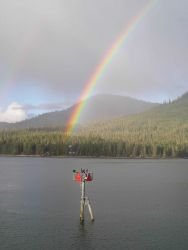 Rainbow seen over daymark 48 while cormorants take in the view in Wrangell Narrows. Photo