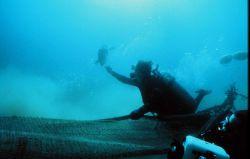 Diver riding a shrimp net watches a turtle escape through the excluder device. Photo