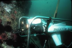 PHANTOM S2 working hard bottom reef in the Gulf of Farallons Sanctuary. Photo
