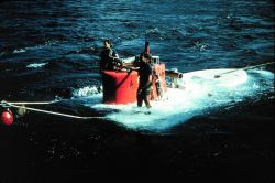 DSV TURTLE, recently retired by the Navy, was a sister sub to ALVIN. Photo