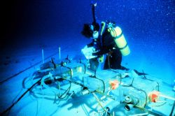 AQUARIUS scientist adjusts coral feeding experiment controlled in habitat. Image