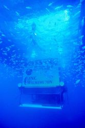 AQUARIUS weighs 100 tons in air but can be weightless underwater. Image