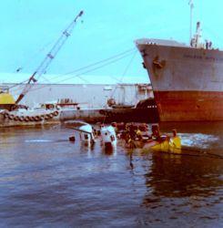 Chilean Nitrate ship Photo