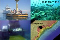 The Florida Key's National Marine Sanctuary cruise aboard the NOAA Ship NANCY FOSTER yielded an opportunity to assist other programs in need of valuab Photo
