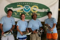Greetings from Texas! NOAA's National Marine Fisheries Service, Southeast Fisheries Science Center, Galveston Laboratory raises captive sea turtles fo Photo