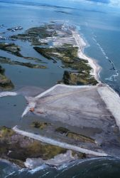 An aerial view of East Timbalier Island, the Gulf of Mexico is on the right Image